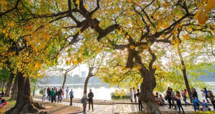 Herbst in Hanoi reisennachasien.com asiatica travel