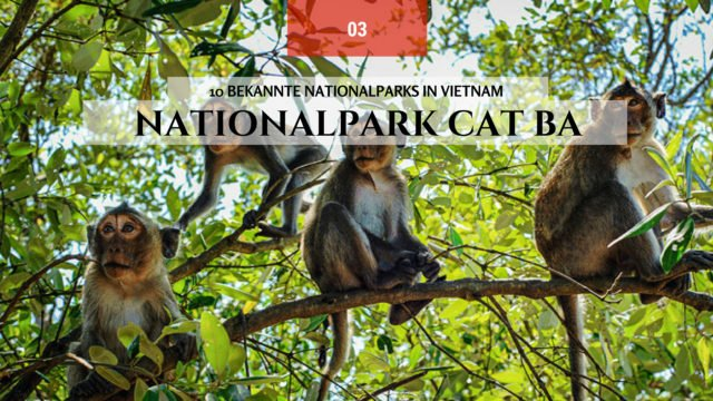 Nationalpark Cat Ba, Hai Phong